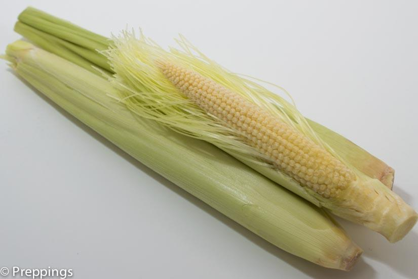 Ingredient Of The Day: Baby Corn
