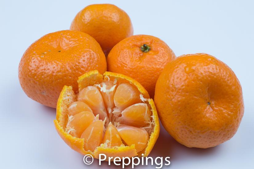 Ingredient Of The Day: Kishu Tangerine