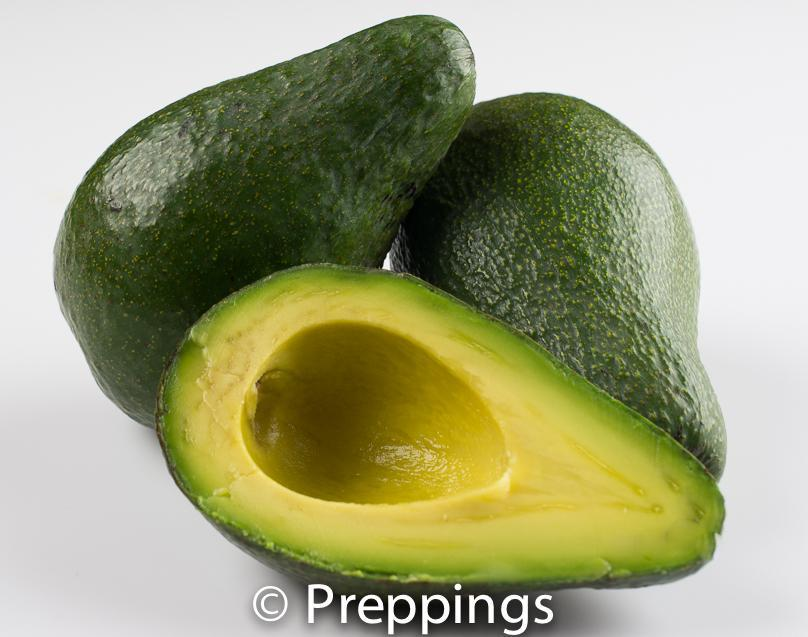 Fuerte Avocado