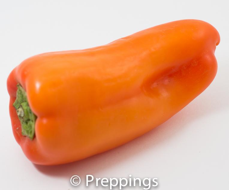 Gypsy Pepper