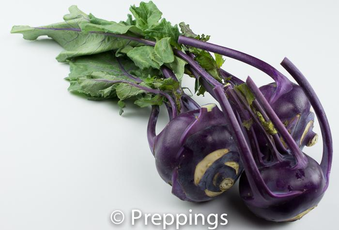 Ingredient Of The Day: Purple Kohlrabi