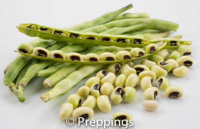 Fresh Black Eyed Pea
