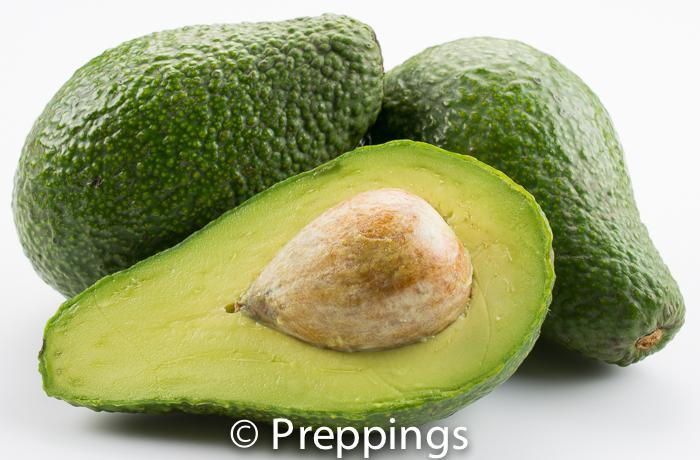 Ingredient Of The Day: MacArthur Avocado