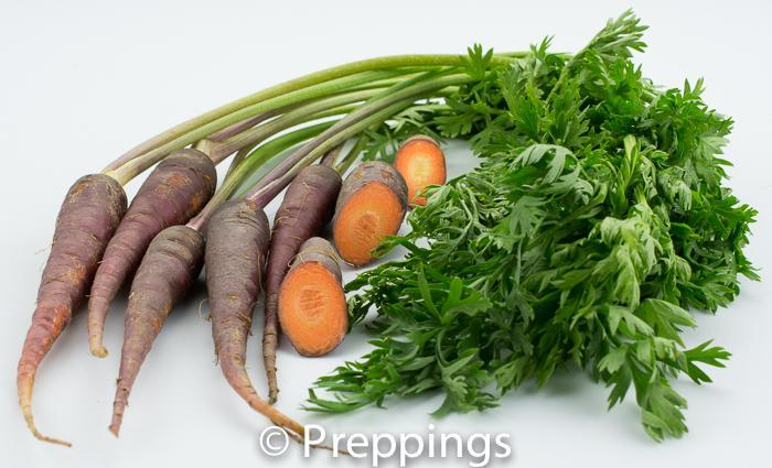 Ingredient Of The Day: Maroon Carrot