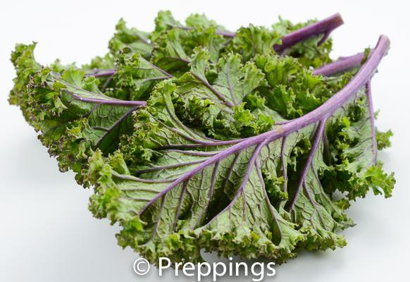 National Kale Day