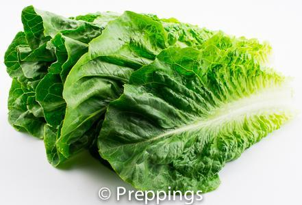 how to cut romaine hearts