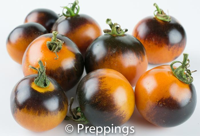 Ingredient Of The Day: Indigo Rose Tomato