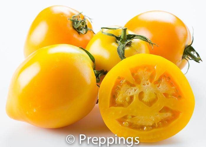 Ingredient Of The Day: Jubilee Tomato