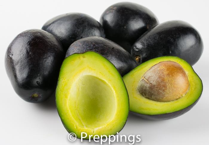 Ingredient Of The Day: Mexicola Avocado
