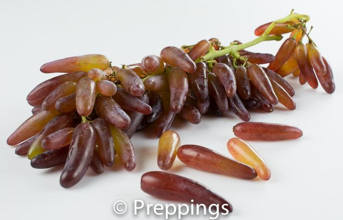 Witch Finger Grape
