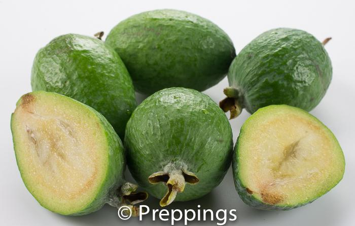 Ingredient Of The Day: Feijoa