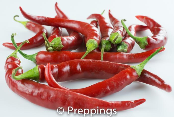 Cayenne Chile Pepper