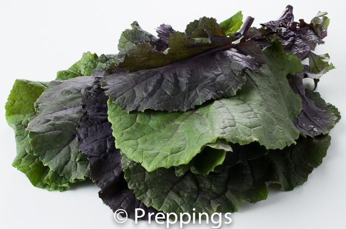 Ingredient Of The Day: Karinata Kale