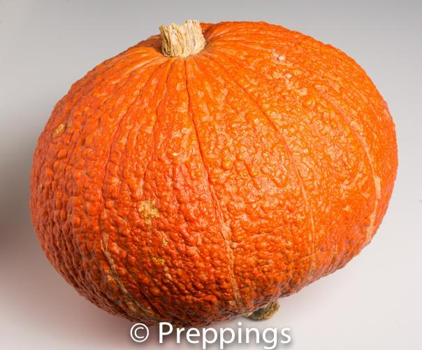 Ingredient Of The Day: Hubbard Squash
