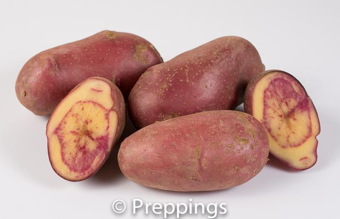 Amarosa Fingerling Potato