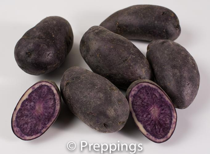 Purple Fingerling Potato