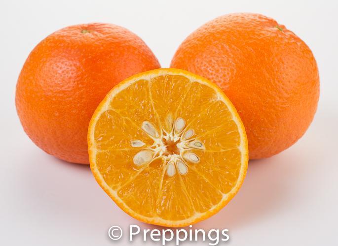 Temple Orange