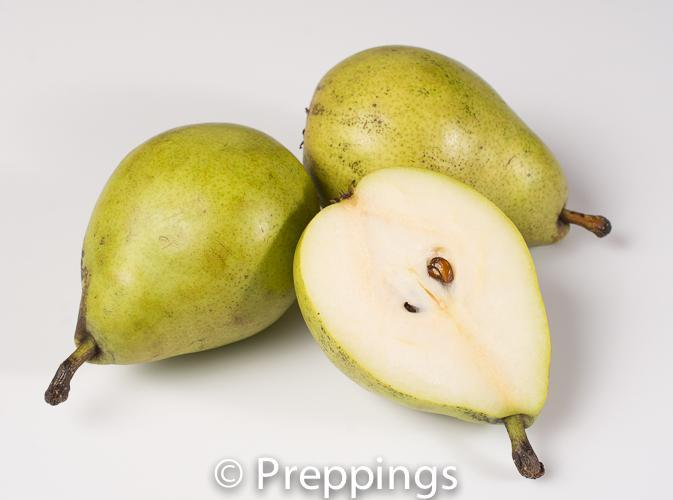 Green Anjou Pear