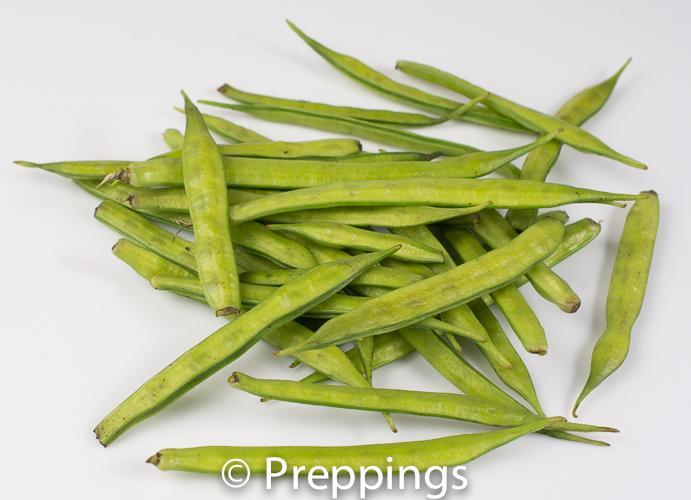 Young Fresh Guar Bean