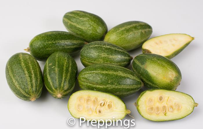 Ingredient Of The Day: Parval Cucumber