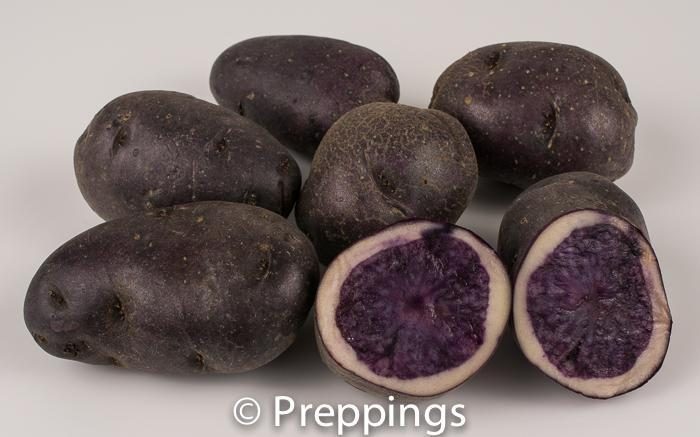 Purple Peruvian Potato