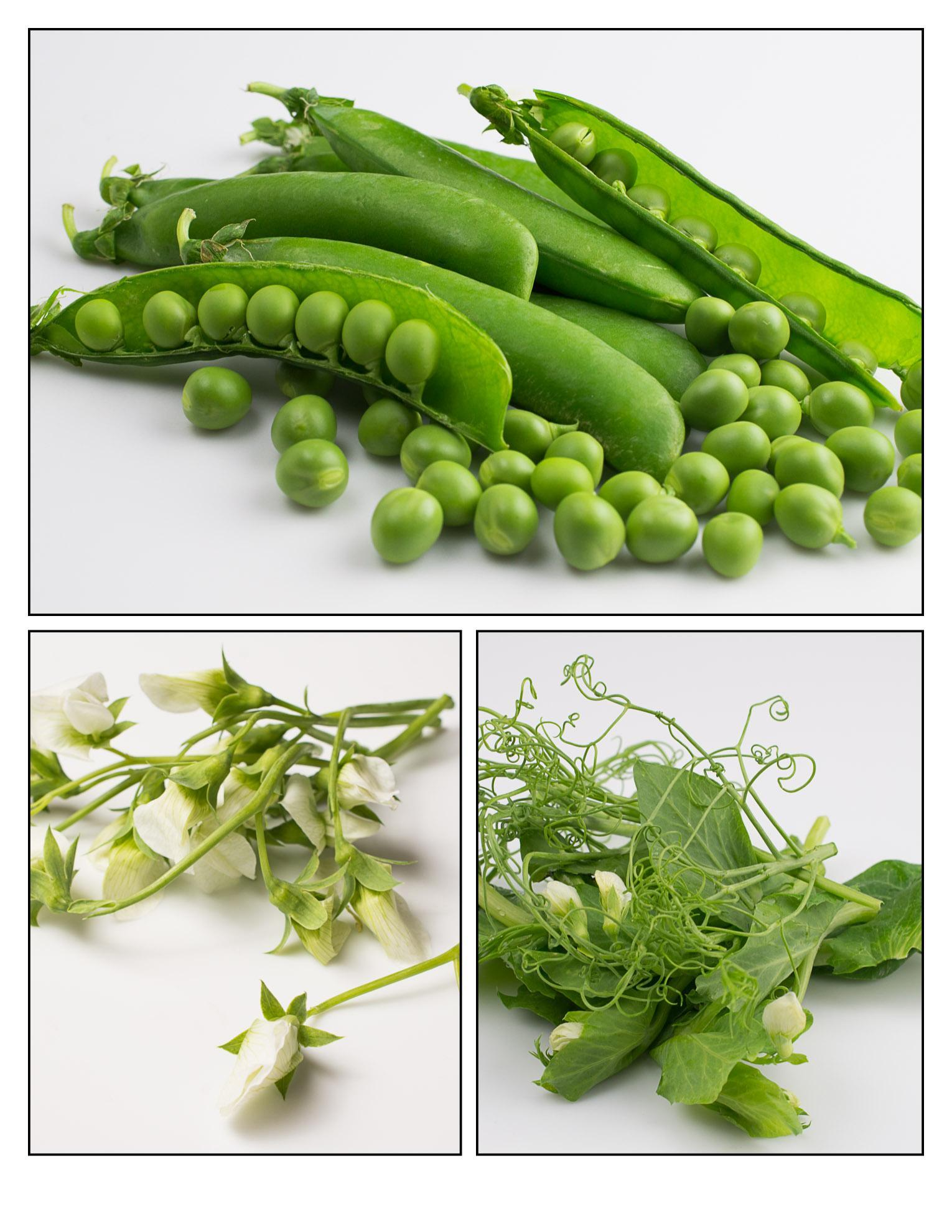 Tip To Tail: English Pea