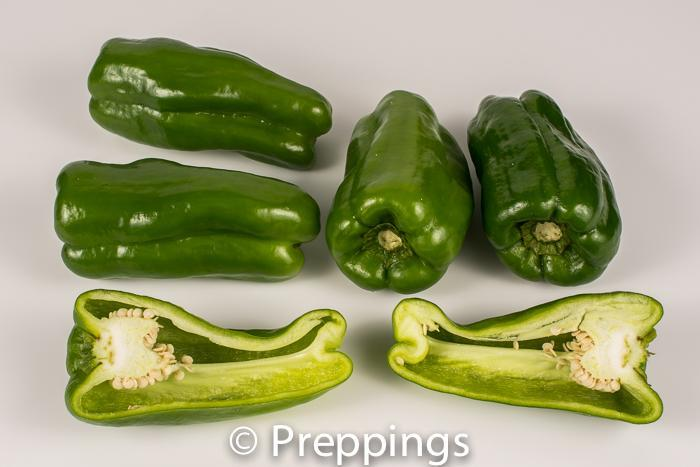 Japanese Green Pepper