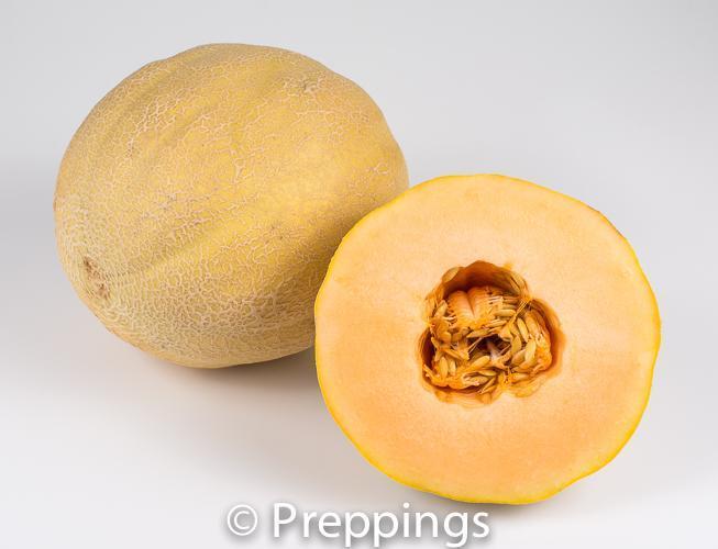 Goddess Melon
