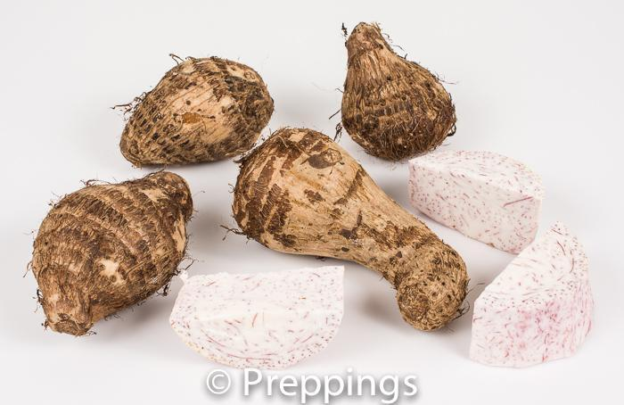 Ingredient Of The Day: Taro Root