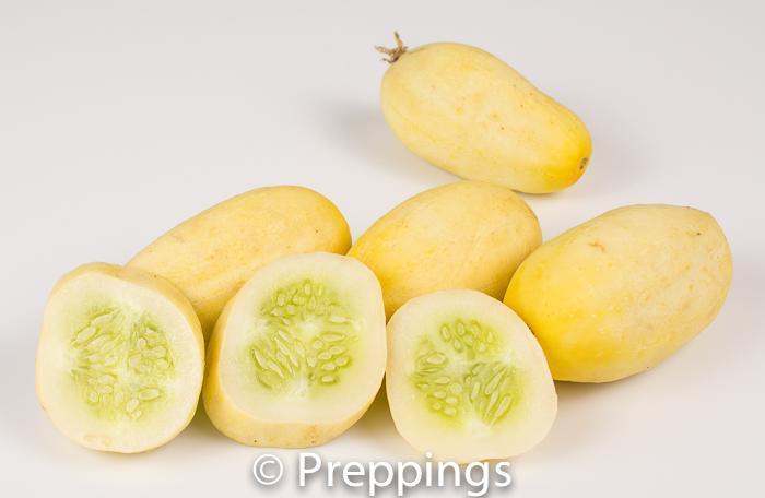 Ingredient Of The Day: White Wonder Cucumber