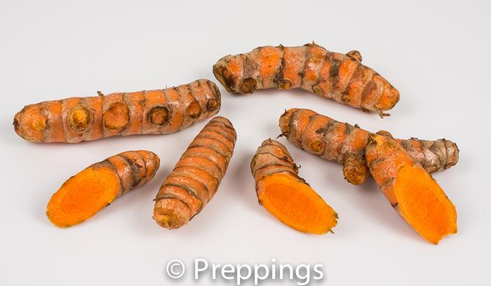 Yellow Turmeric Root