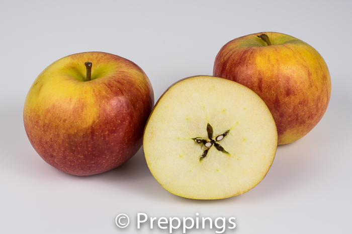 Braeburn Apple