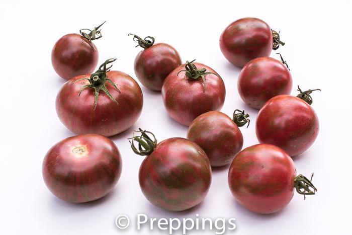 Purple Bumble Bee Tomato