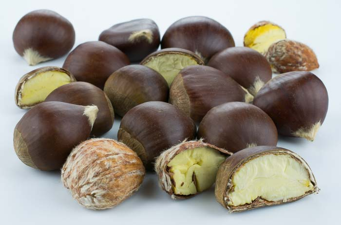 Ingredient Of The Day: Chestnut