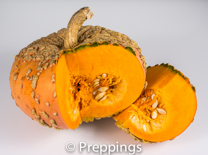 Ingredient Of The Day: Galeux D'Eysines Squash