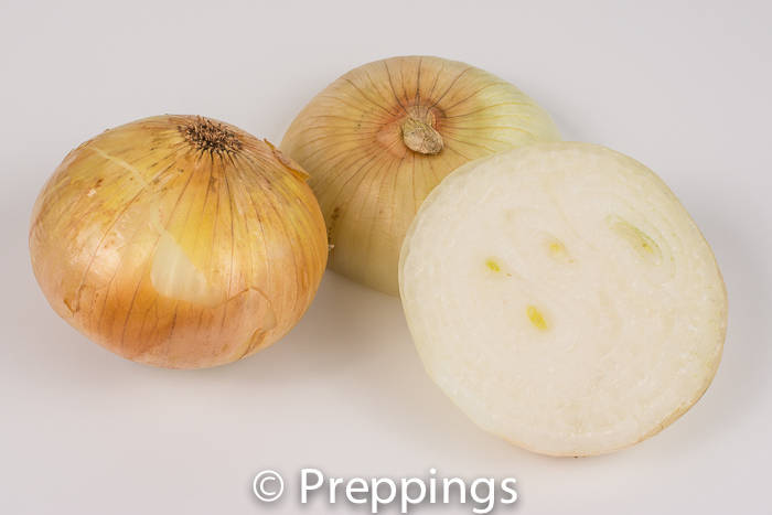 Mayan Sweet Onion