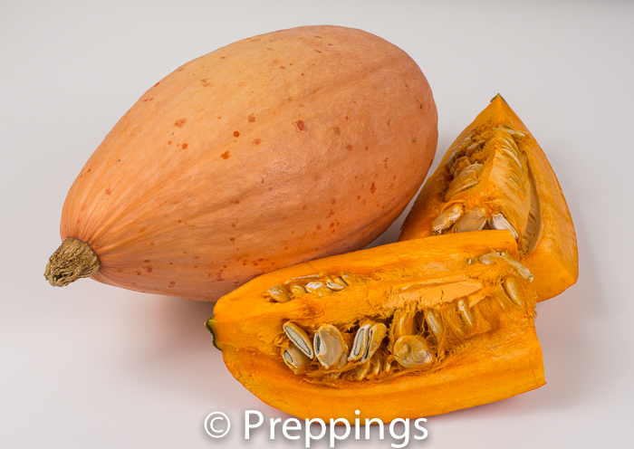 Ingredient Of The Day: Banana Squash