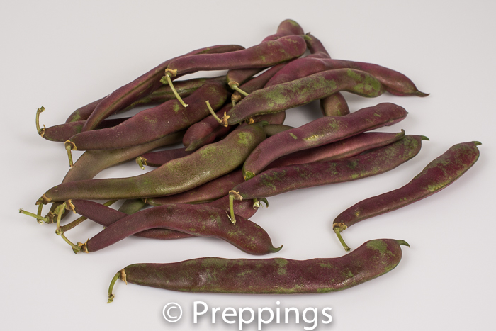 Ingredient Of The Day: Red Swan Bean