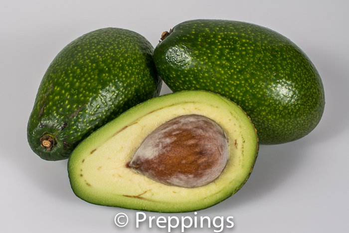 Ingredient Of The Day: Ettinger Avocado