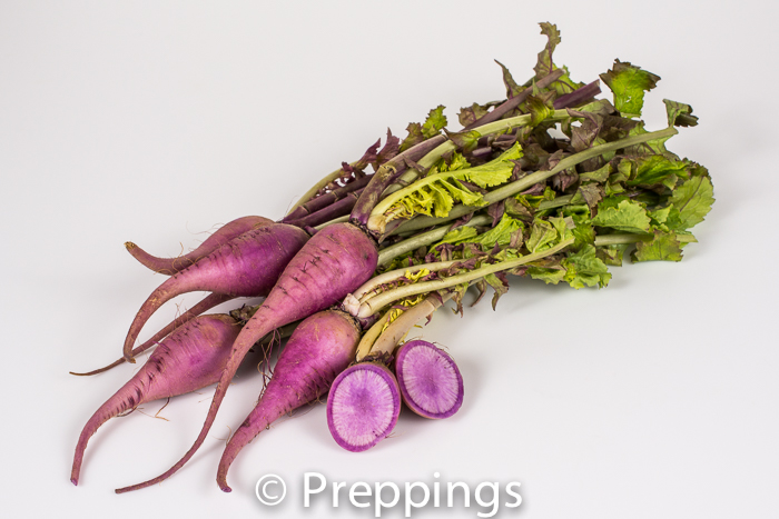 Ingredient Of The Day: Purple Ninja Radish