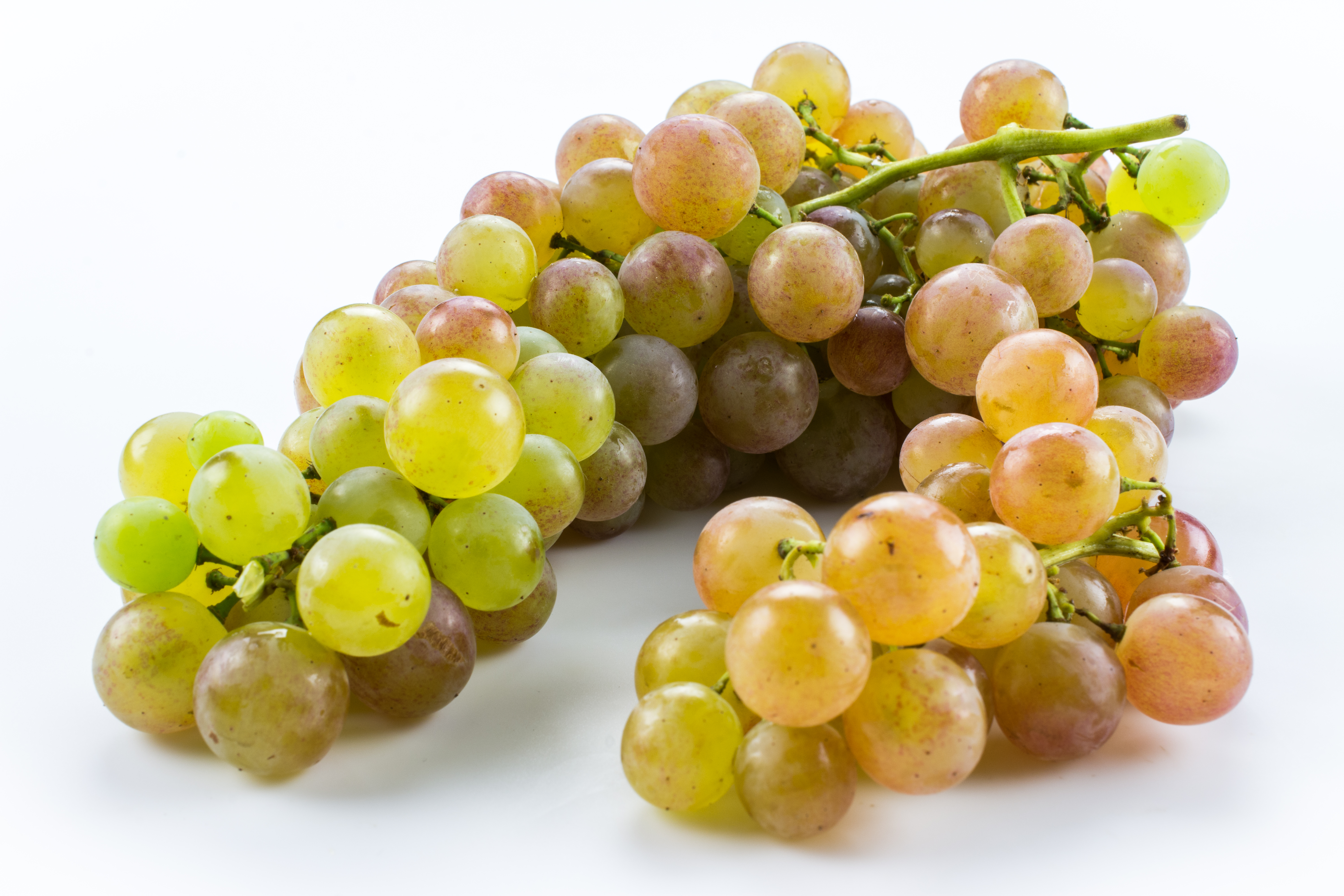 Ingredient Of The Day: Bronx Grapes