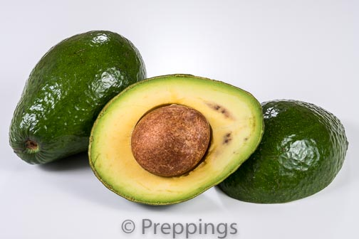 Ingredient Of The Day: Florida Avocado