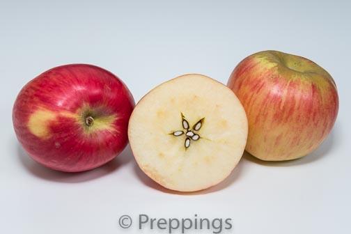 Ingredient Of The Day: Sierra Beauty Apple
