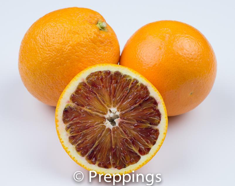 Ingredient Of The Day: Blood Orange