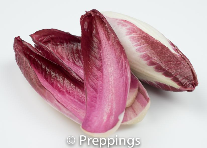 Ingredient Of The Day: Red Endive
