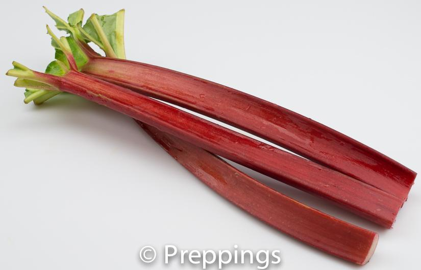 Ingredient Of The Day: Rhubarb