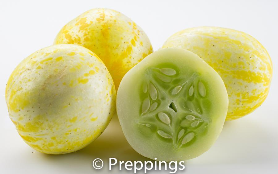 Ingredient Of The Day: Lemon Cucumber