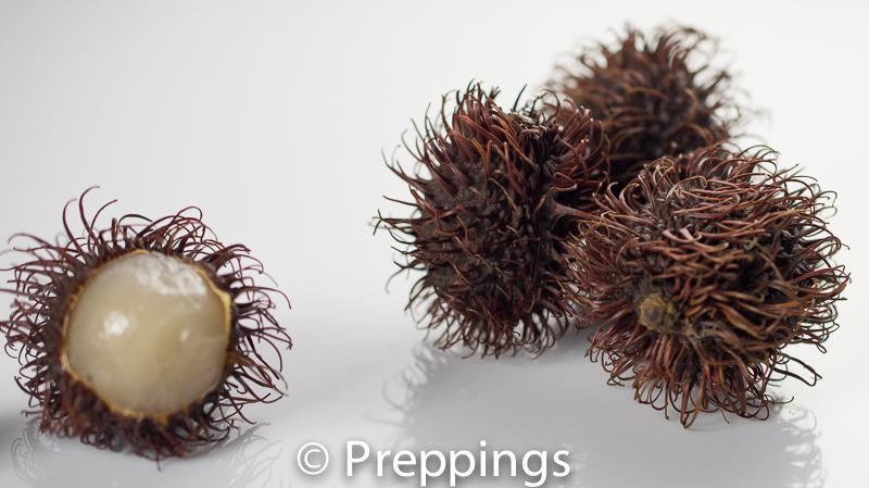 Ingredient Of The Day: Rambutan