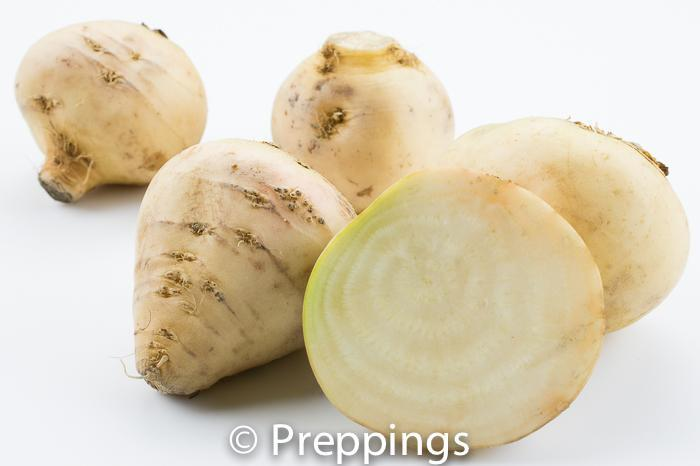Ingredient Of The Day: Albino Beet