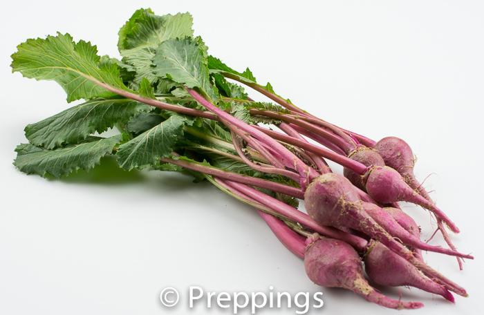Ingredient Of The Day: Baby Scarlet Turnip